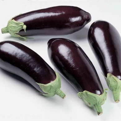 Eggplant from 2.49$